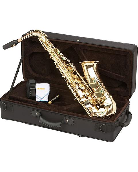 Allora Paris Series Professional Alto Saxophone AAAS-801 - Lacquer Case