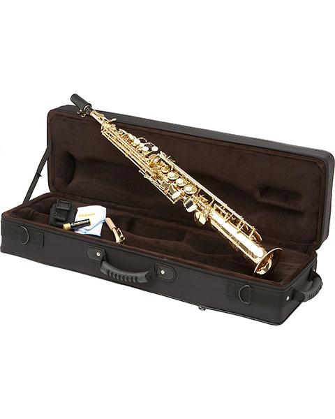 Allora Paris Series Professional Straight Soprano Saxophone with 2 Necks AASS-801 - Lacquer Case