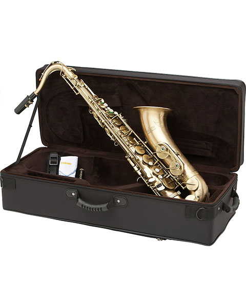 Allora Paris Series Professional Tenor Saxophone AATS-807 - Antique Matte Finish Case