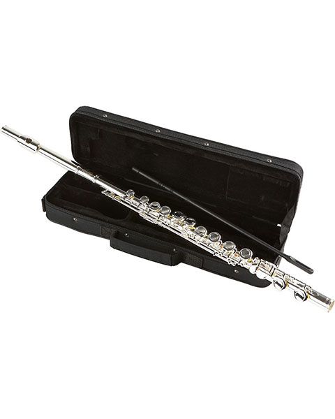Allora Student Series Flute Model AAFL-229 Case