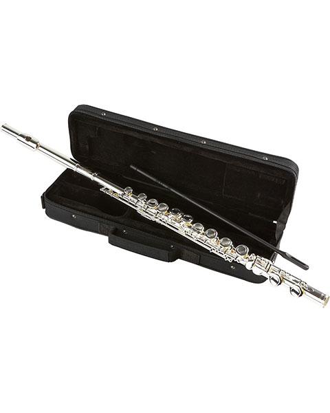 Allora Student Series Flute Model AAFL-229 Case